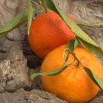 Mandarine (Nova)